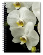 Orchids Kauai Spiral Notebook