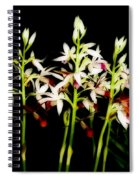 Orchids On Black Spiral Notebook