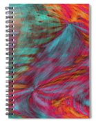 Order Of The Universe Spiral Notebook