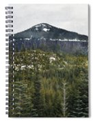 Oregon Cascade Range Forest Spiral Notebook