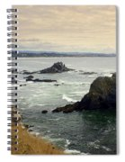 Oregon Coast 17 Spiral Notebook