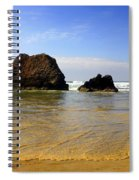 Oregon Coast 9 Spiral Notebook