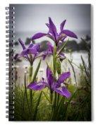 Oregon Iris At The Beach Spiral Notebook