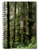 Oregon Old Growth Coastal Forest Spiral Notebook