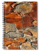 Organic Abstract Spiral Notebook
