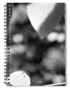 Organic Art Series 3 Spiral Notebook