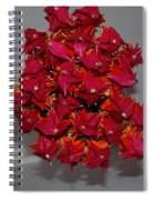 Origami Flowers Spiral Notebook