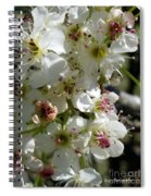 Ornamental Pear Spiral Notebook