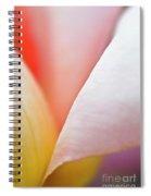 Ornamental Rose Flower Details Spiral Notebook