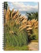 Ornamental White Pampas Grass-1 Spiral Notebook