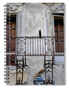 Ornate Weathered Artistic Architecture Spiral Notebook