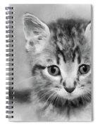 Orphan Spiral Notebook