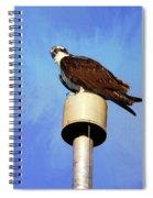 Osprey 1 Spiral Notebook