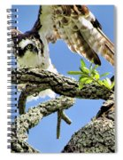 Osprey 4 Spiral Notebook