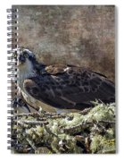 Osprey And Young - Feeding Spiral Notebook