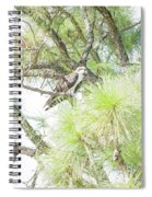 Osprey Applesauce Spiral Notebook