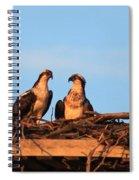 Osprey At Home Spiral Notebook