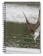 Osprey Dive Spiral Notebook