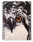 Osprey Eyes  Spiral Notebook