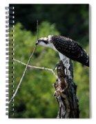 Osprey Gaze II Spiral Notebook