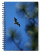Osprey In Flight 8 Spiral Notebook