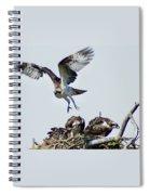 Osprey Nest Spiral Notebook