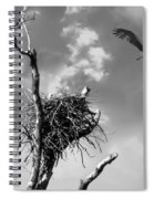 Osprey Nest Spiral Notebook