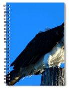Osprey On A Pole Spiral Notebook