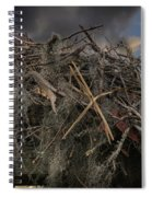 Osprey Protecting The Nest Spiral Notebook