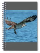 Osprey Ready For Fish Spiral Notebook