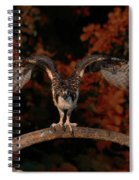 Osprey Ready For Take Off Spiral Notebook