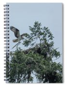 Osprey Reinforcing Its Nest 2017 Spiral Notebook
