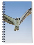 Osprey Soar Search Spiral Notebook