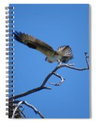 Osprey Takeoff Spiral Notebook