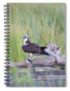 Osprey Victory Spiral Notebook