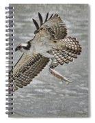 Osprey With Breakfast Spiral Notebook