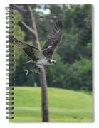 Osprey With Catch Spiral Notebook