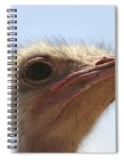 Ostrich Head Close Up Spiral Notebook