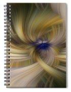 Other Side Of Blue Spiral Notebook
