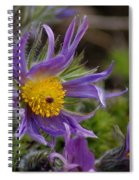 Otherworldly Flora Spiral Notebook