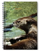 Otter Spiral Notebook