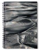 Otter Ripples Spiral Notebook
