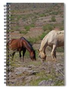 Out In The Open Range Spiral Notebook