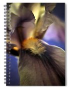 Out Of The Darkness Spiral Notebook
