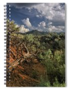 Out On The Mesa 2 Spiral Notebook
