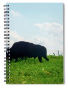 Out On The Range Spiral Notebook