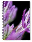 Outstretched Spiral Notebook