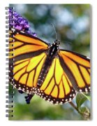 Outstretched Monarch Spiral Notebook