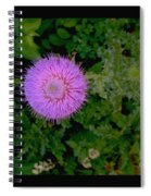 Over A Thistle Spiral Notebook