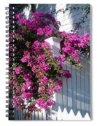 Over The Fence Spiral Notebook